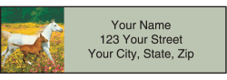 Horse Play Address Labels - click to view product detail page