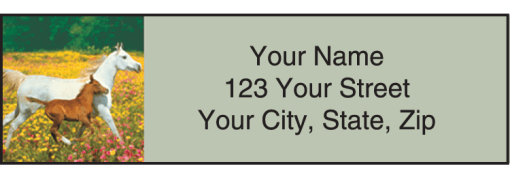 Horse Play Labels - enlarged image