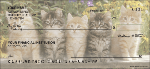 Kitty Review Checks - enlarged image