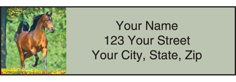 Horse Play Address Labels - Set of 210