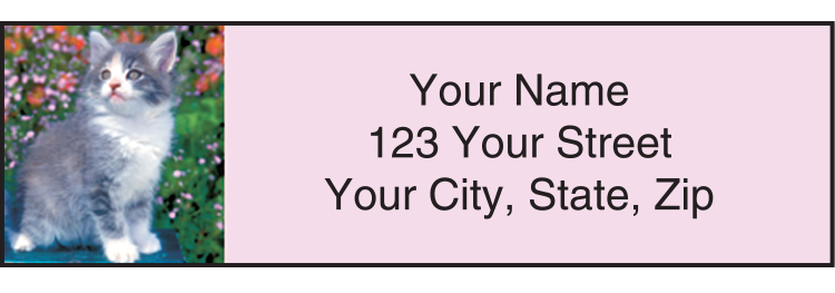Kitty Review Address Labels - Set of 210